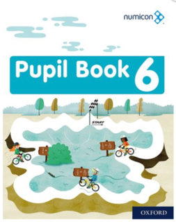 Pupil Book 6 - Pack of 15