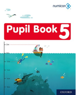 Pupil Book 5 - Pack of 15
