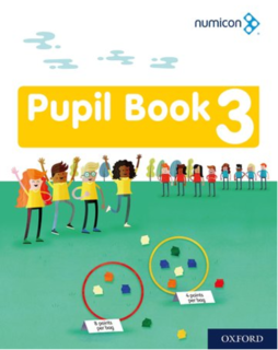 Pupil Book 3 - Pack of 15